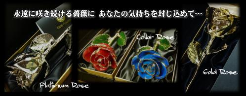 豊橋の花屋はなふじつつじが丘店|ゴールドローズ・プロポーズ・記念日・誕生日・サプライズ