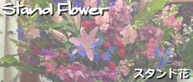 愛知県豊橋市の花屋はなふじつつじが丘店・スタンド花・生花スタンド・開店祝